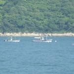 2020年「コマセ網漁」による航路内可航⽔域の状況予想